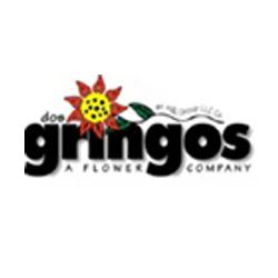 Gnngos